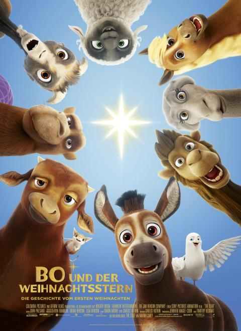Bo und der Weihnachtsstern