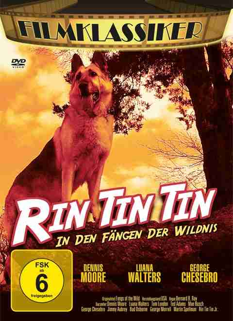 Rin Tin Tin - In den Fängen der Wildnis